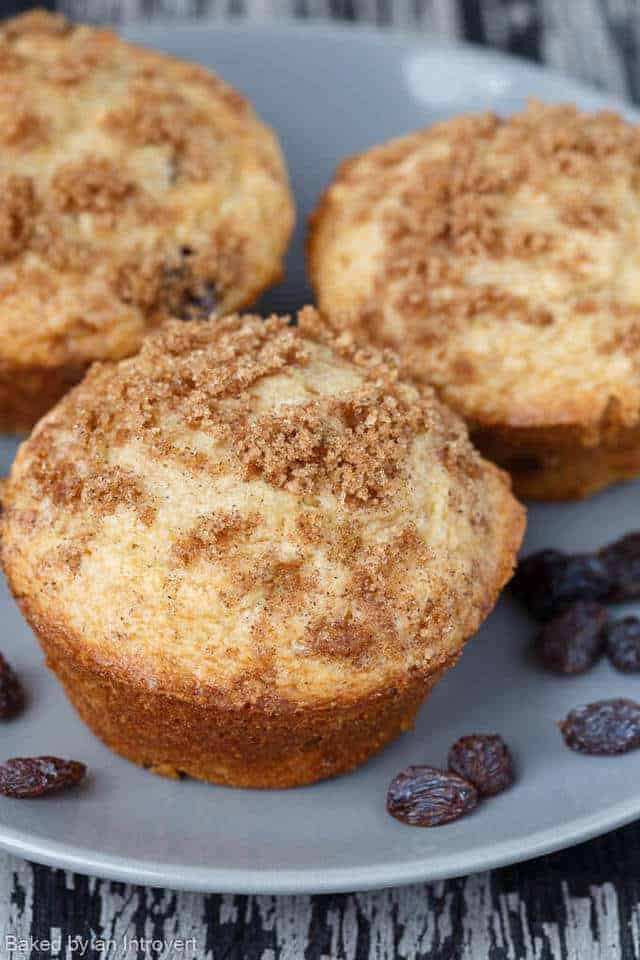 Three cinnamon raisin muffins on a gray plate.