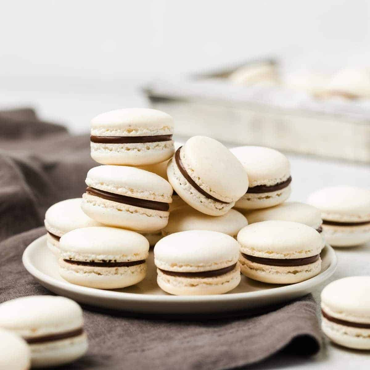 gorgeous macarons with chocolate filling on a white plate