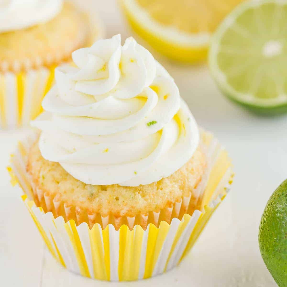 Side view of lemon lime cupcakes on a white background with slices of lemon and lime.