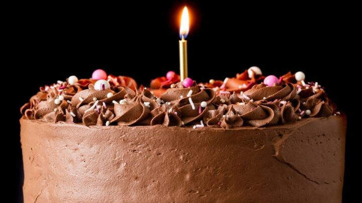 Best Birthday Cake Recipe Baked By An Introvert