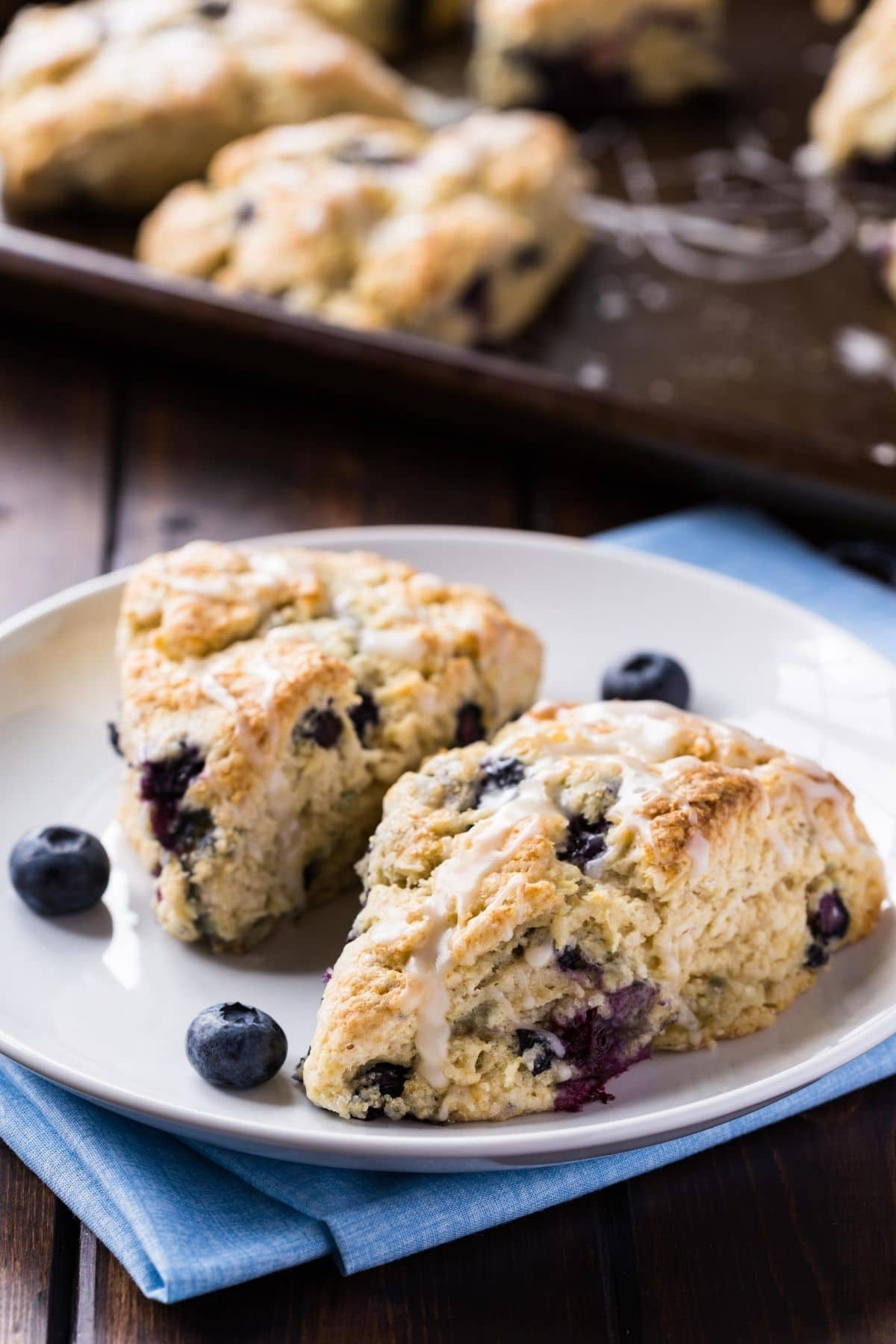 two blueberry scones on a white plate over a blue napkin with a baking sheet of scones in the background