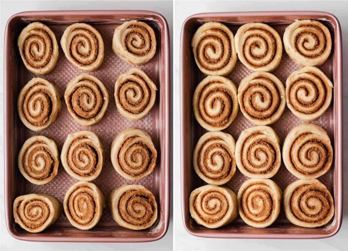 cinnamon rolls in pink baking pan unrisen on the left and risen on the right